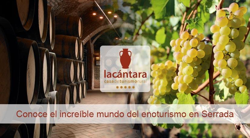 enoturismo ruta del vino de rueda